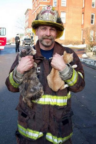 Two-fisted kitty rescue